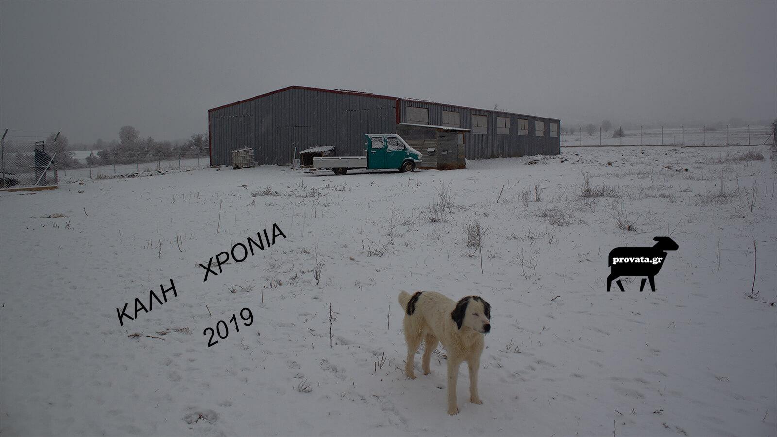 ΚΑΛΗ ΧΡΟΝΙΑ 2019